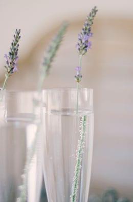 Lavender-champagne