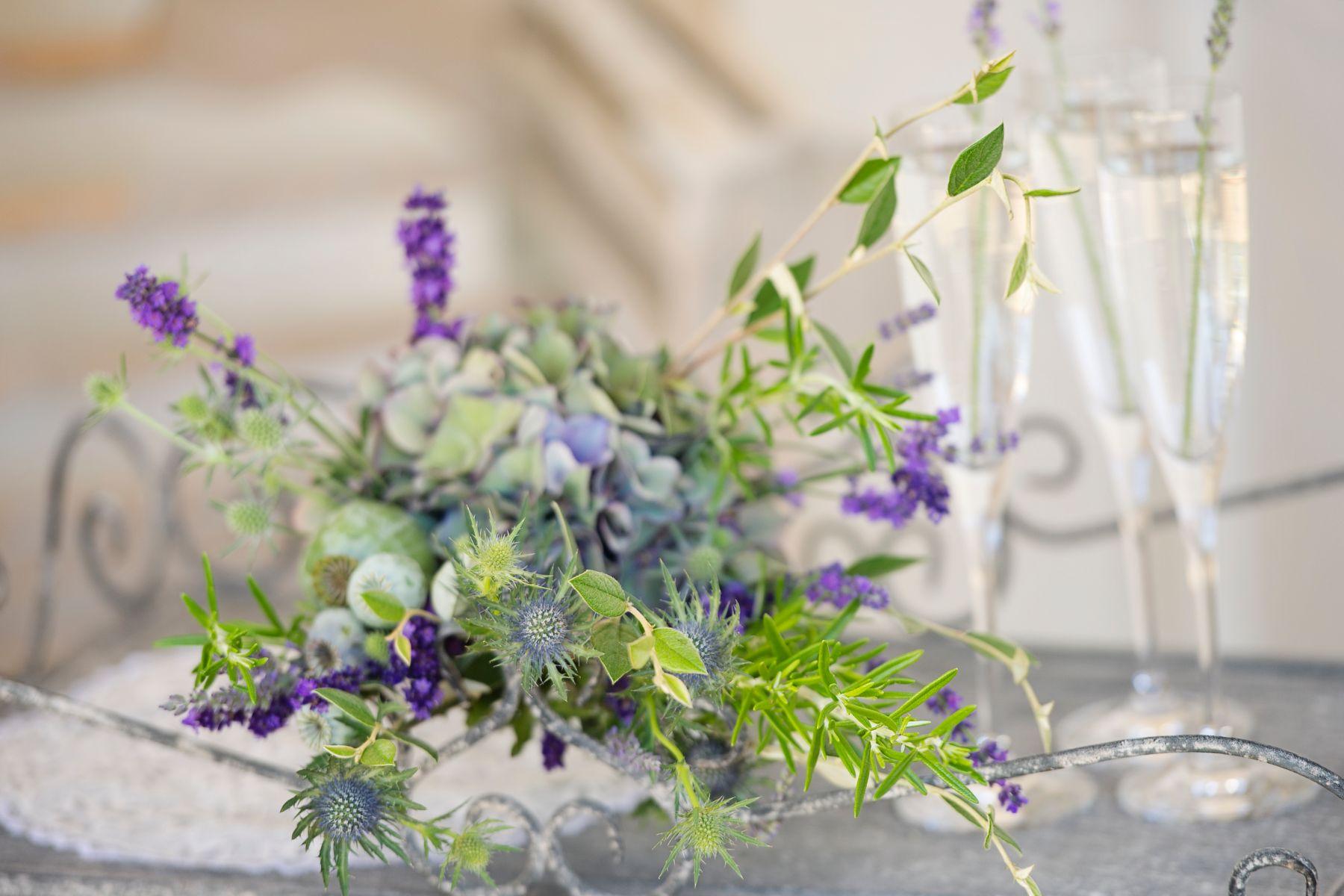 Lavender Provence 26