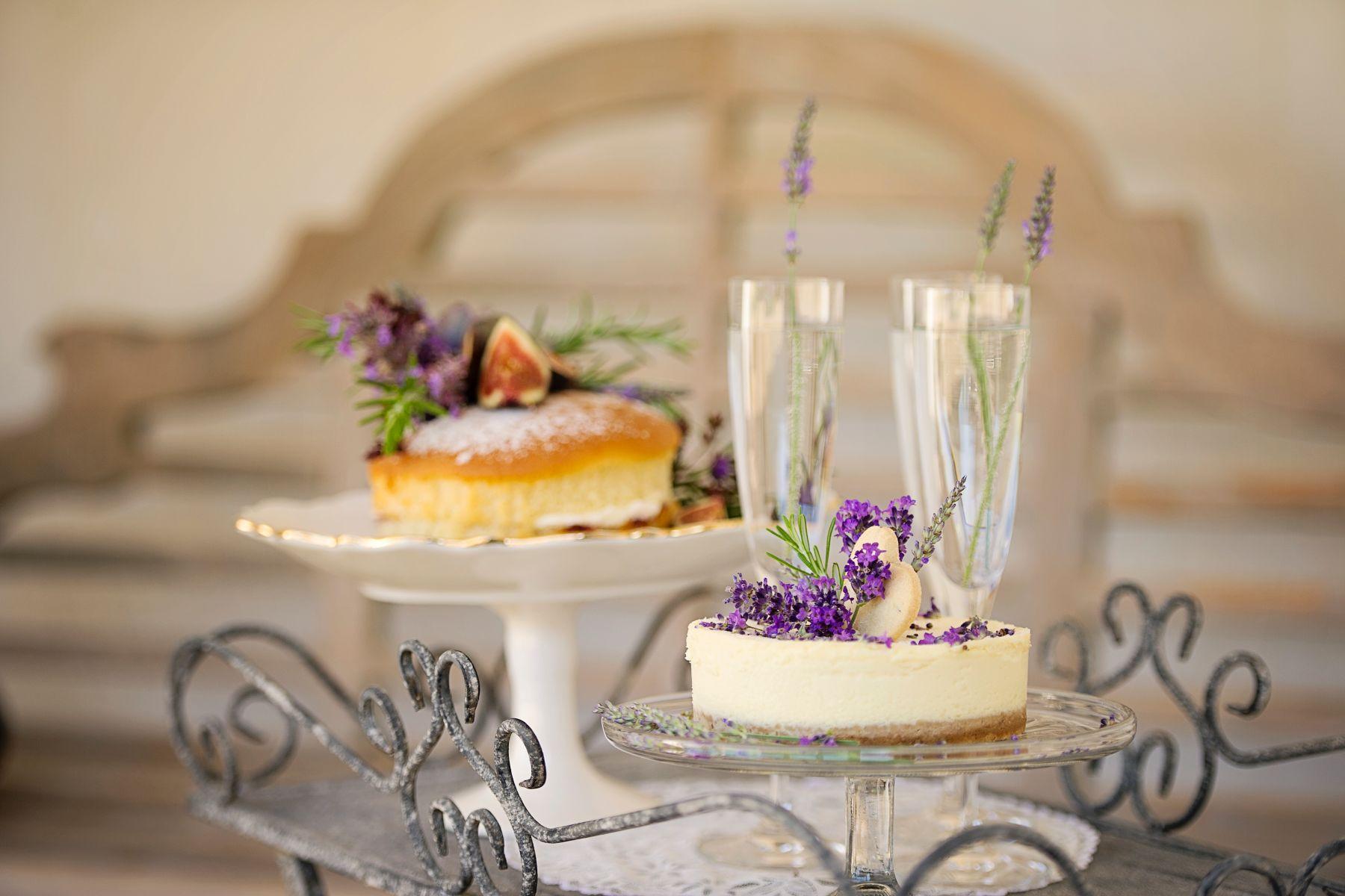 Lavender Provence 13