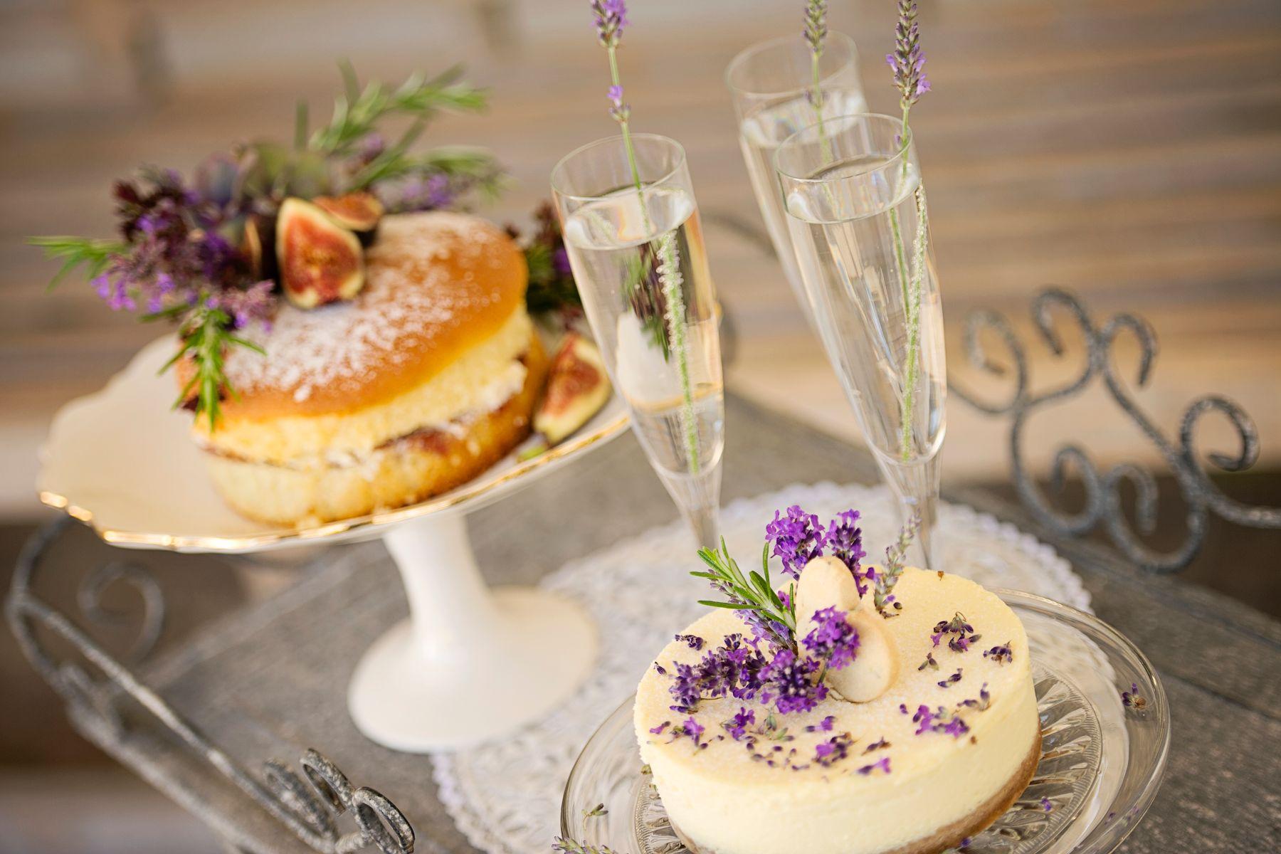 Lavender Provence 29