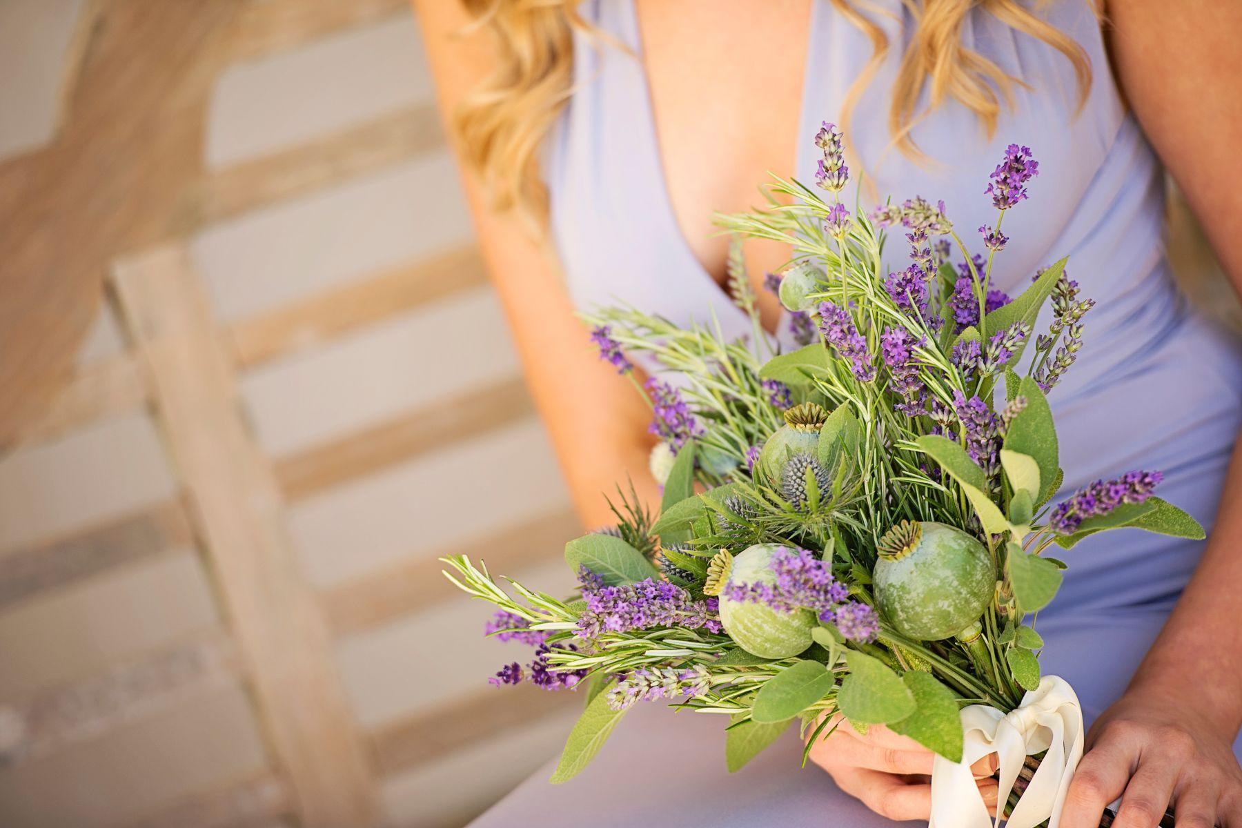 Lavender Provence 40