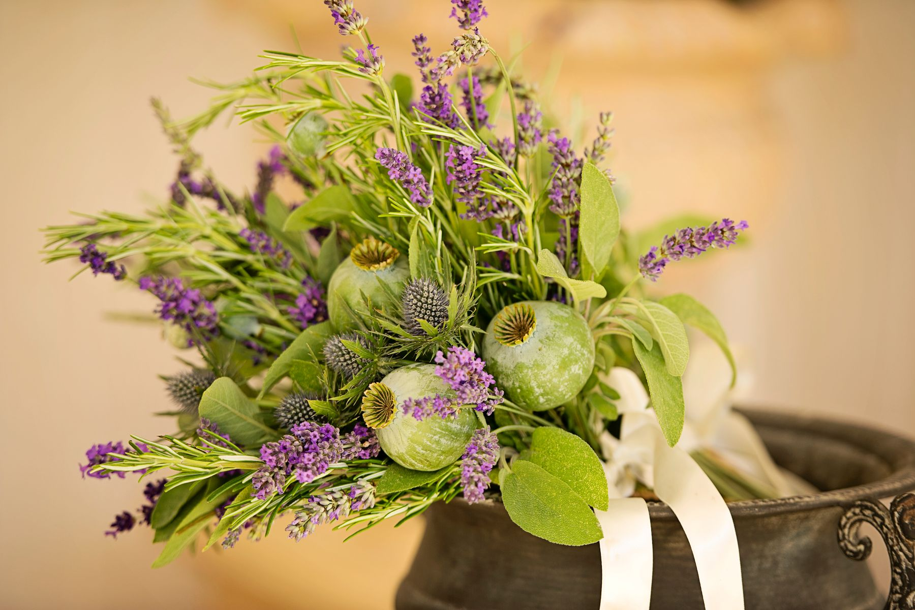 Lavender Provence 18