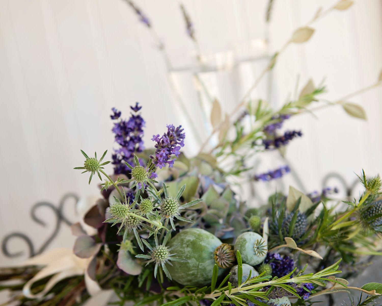 Lavender Provence 30