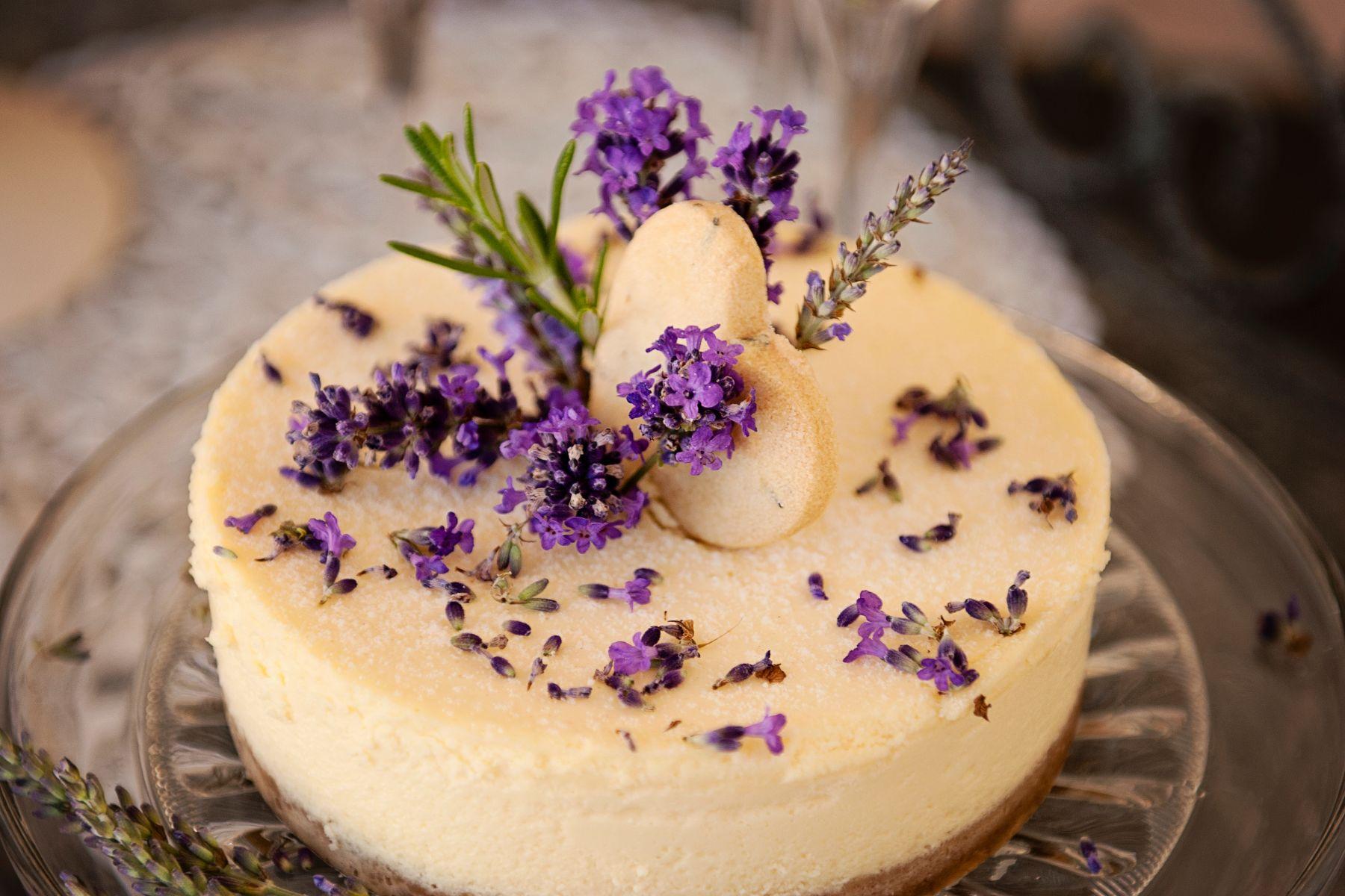 Lavender Provence 2