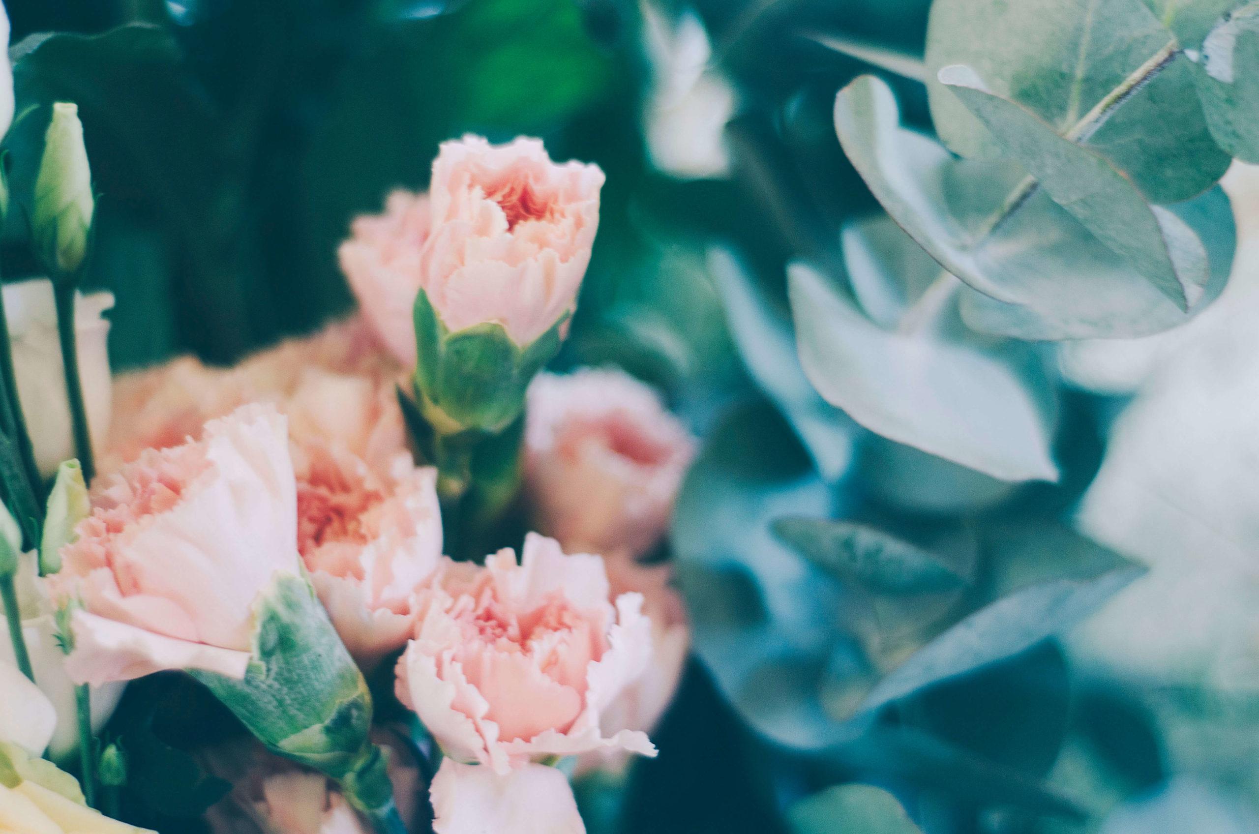 Simply Spring 26