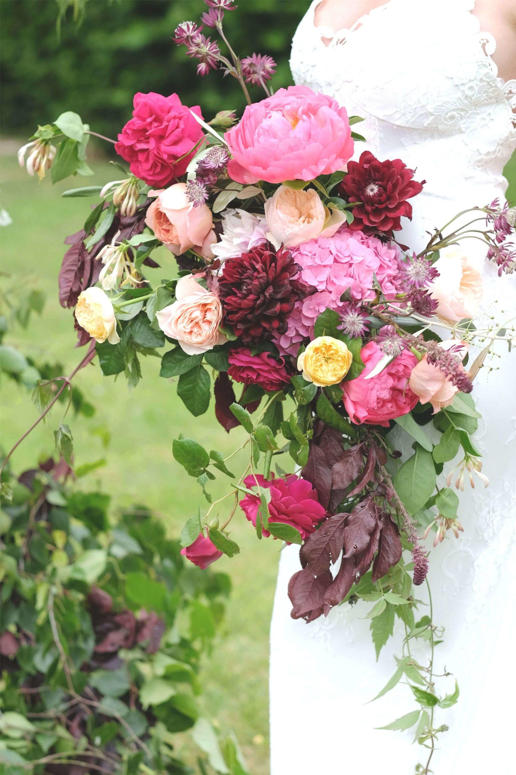Rose, Claret & Blackberries 20