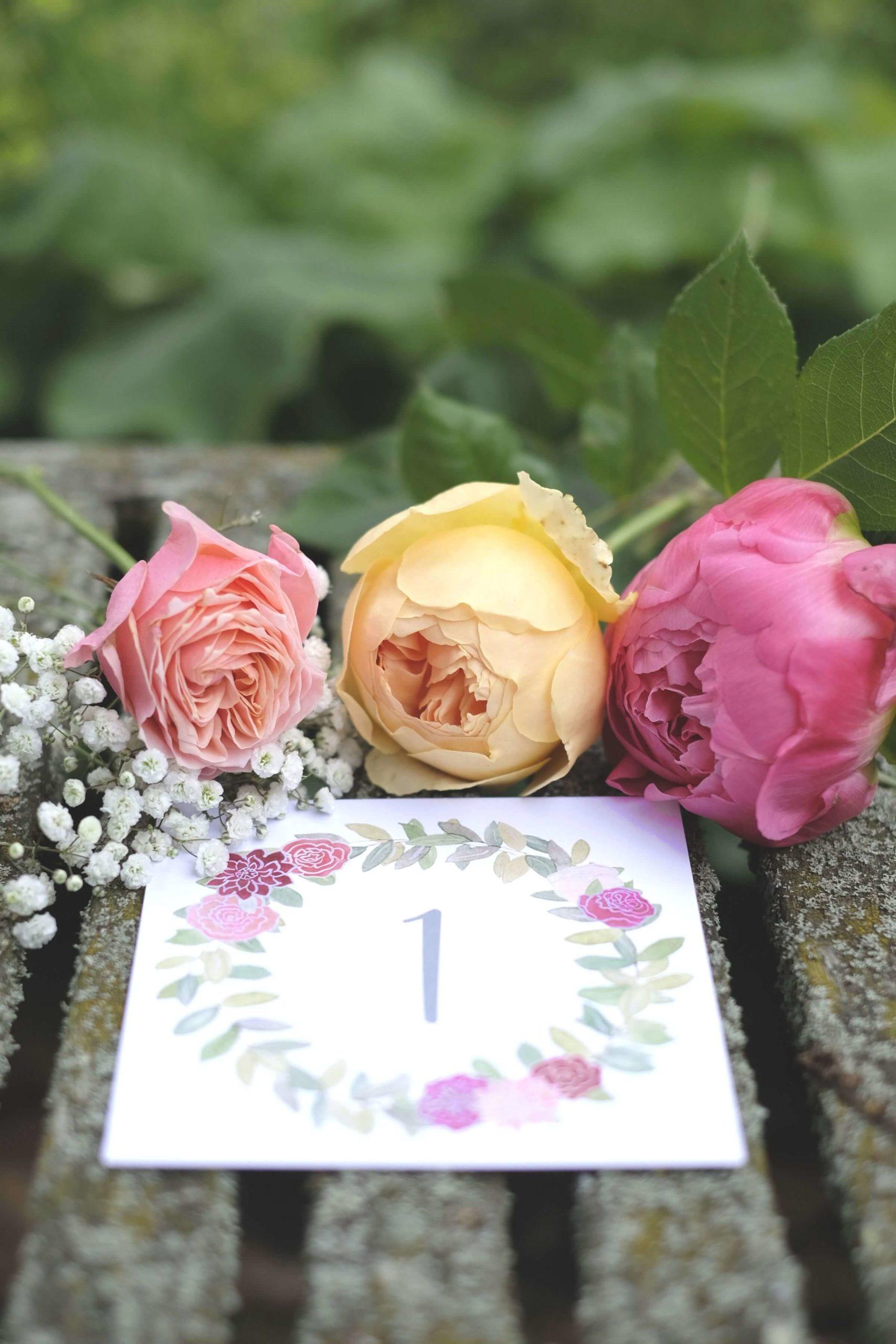 Rose, Claret & Blackberries 57