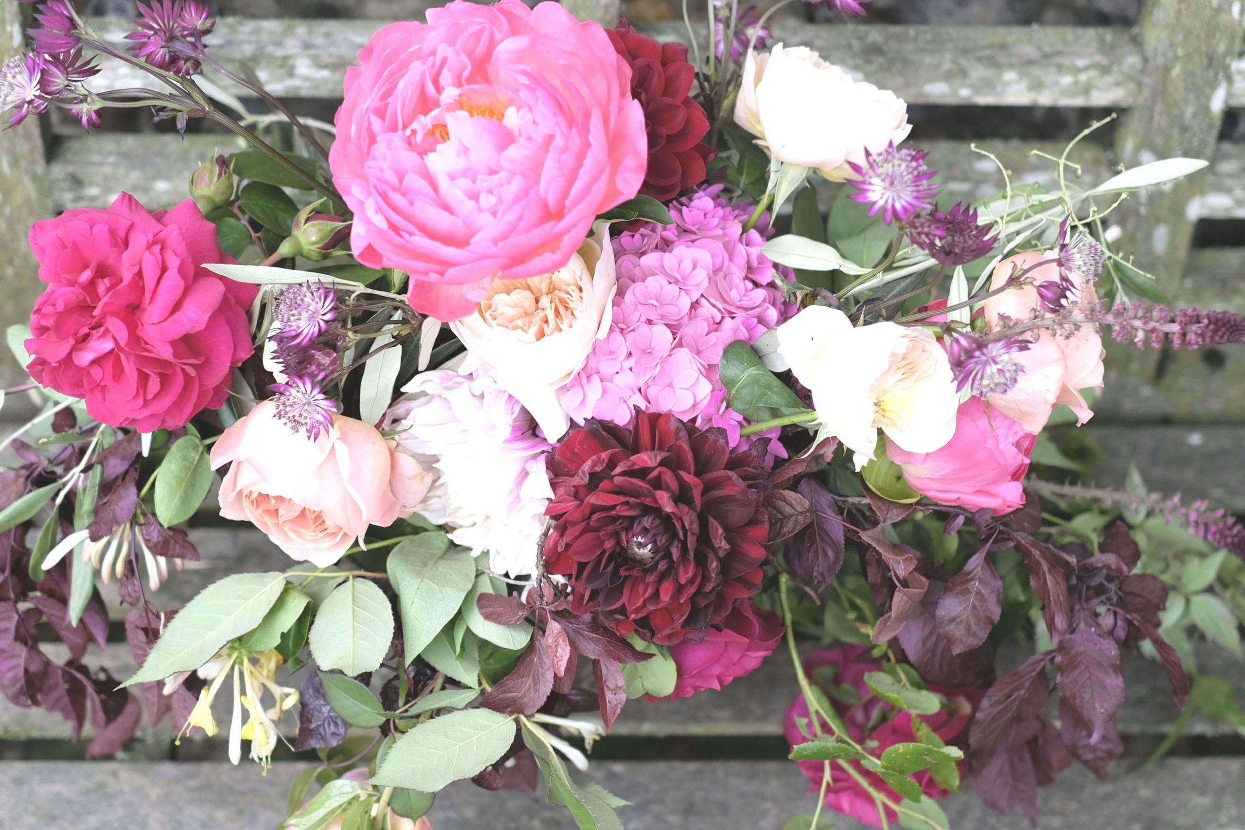 Rose, Claret & Blackberries 34